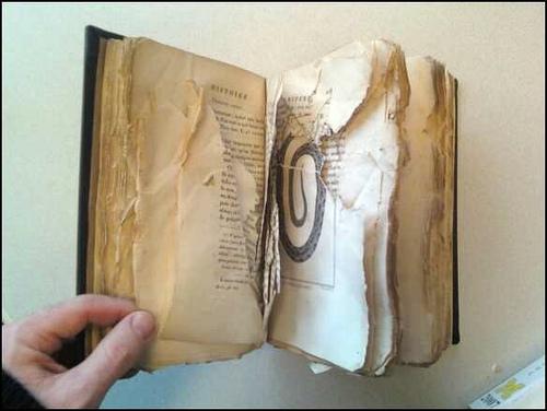 Book damaged beyond repair