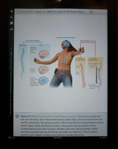 iPad as ebook reader. amazon book business