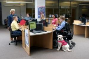 service dog for disabled in libraries